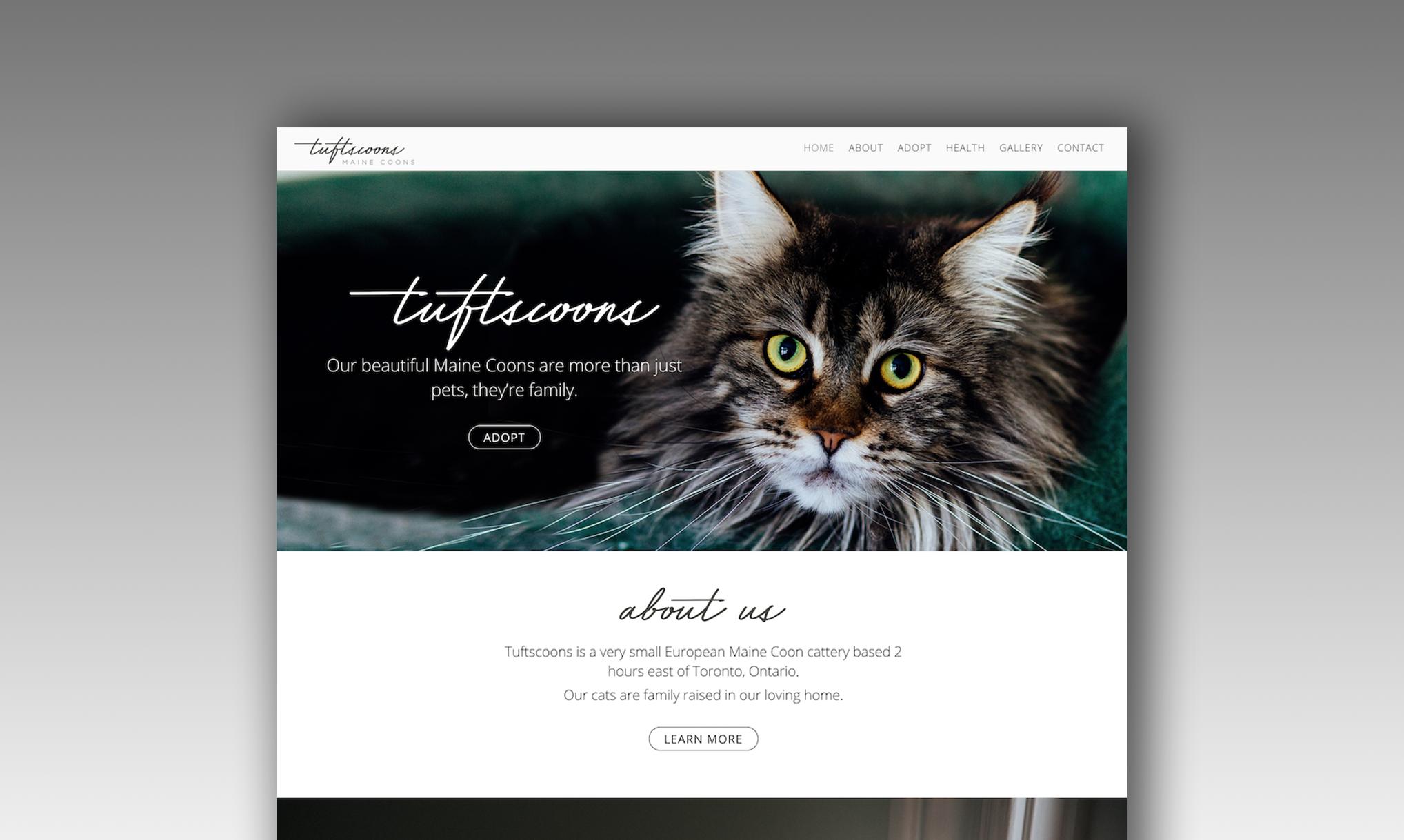 Tuftscoons portfolio